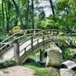 Śliczny oraz schludny ogród to zasługa wielu godzin spędzonych  w jego zaciszu podczas pielegnacji.